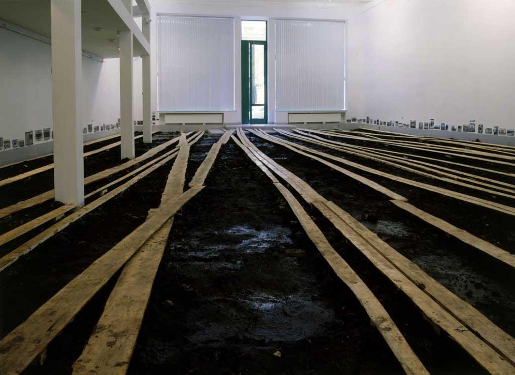 Выставка грязи Дмитрия Гутова
